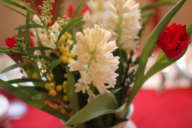 hyacint julblommor