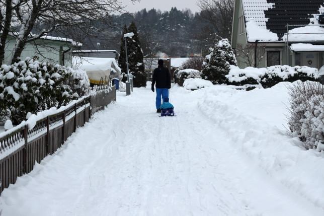 vinter snö pulka
