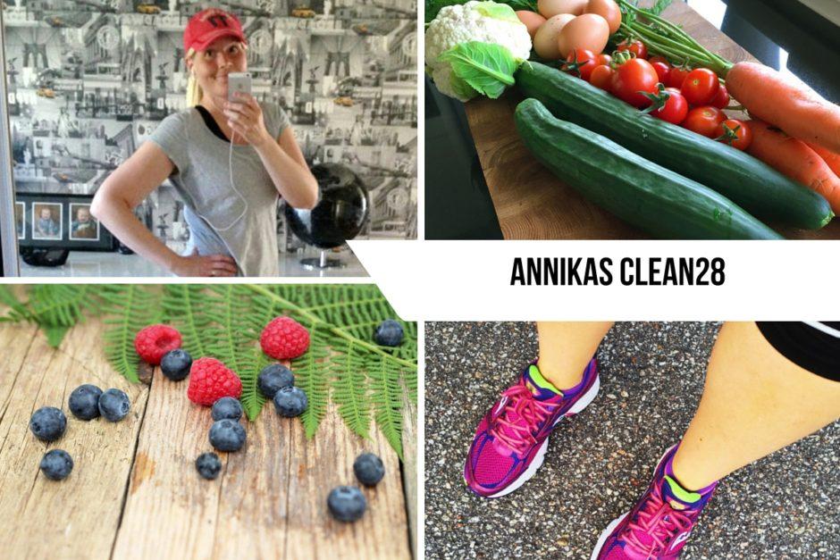 Annikas CLEAN28