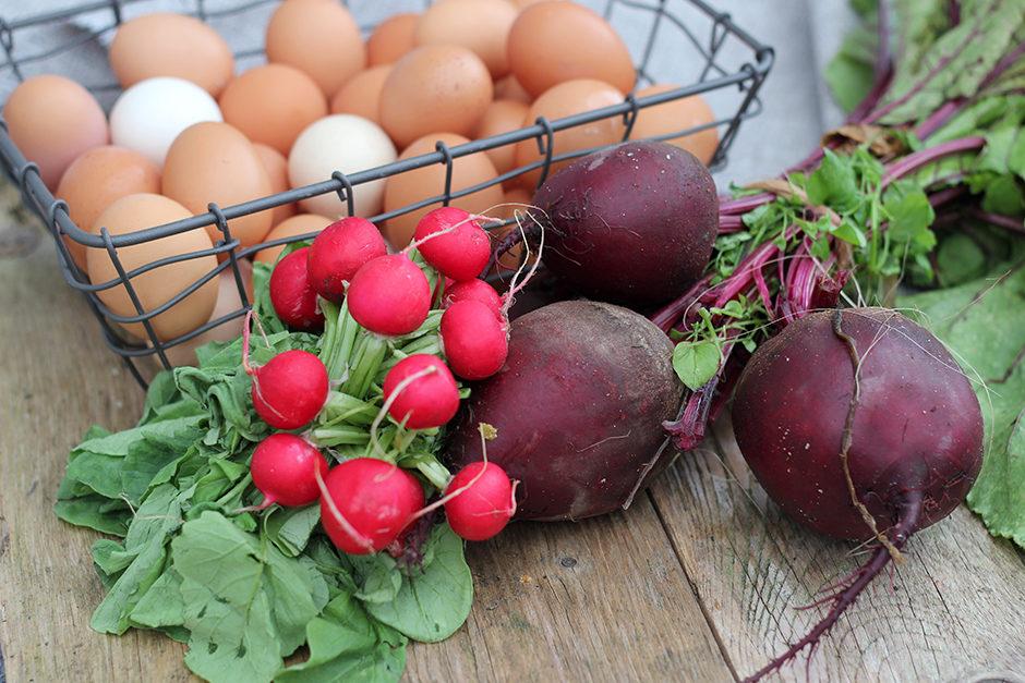 rädisor rödbeta ägg