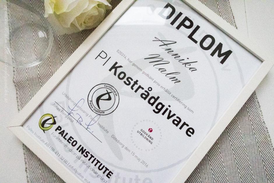 diplom-pi-1