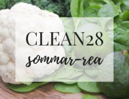 clean28 kostprogram vitsminskning mental träning